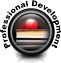 Professional Development Web Seminar