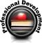 Professional Development Web Seminar