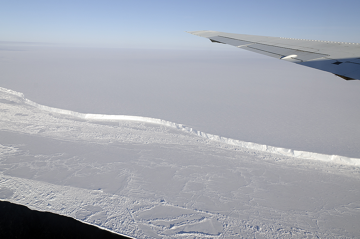 The Export Of Sea Ice From This Area Is A Major Contributor To The Total  Ice Volume Exported Into The Antarctic Circumpolar Current