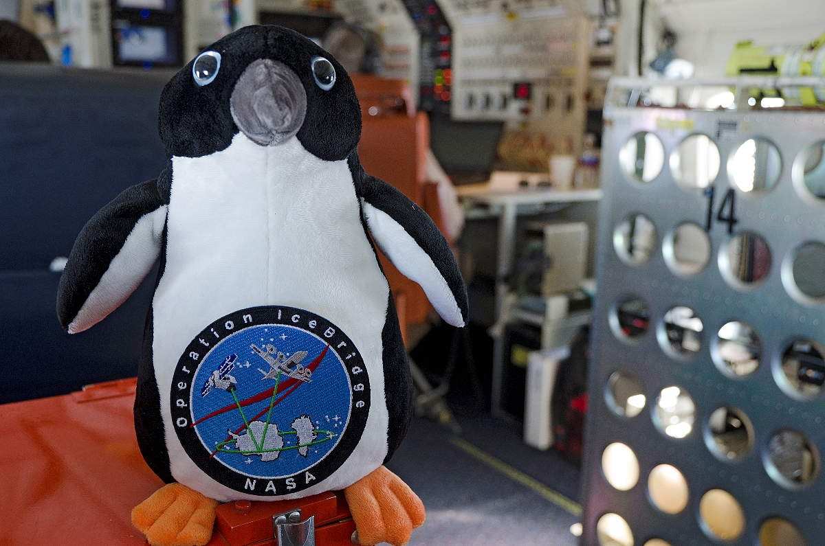 The IceBridge mascot aboard the NASA DC-8
