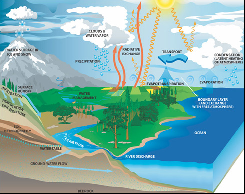 Illustration of Earth's water cycle