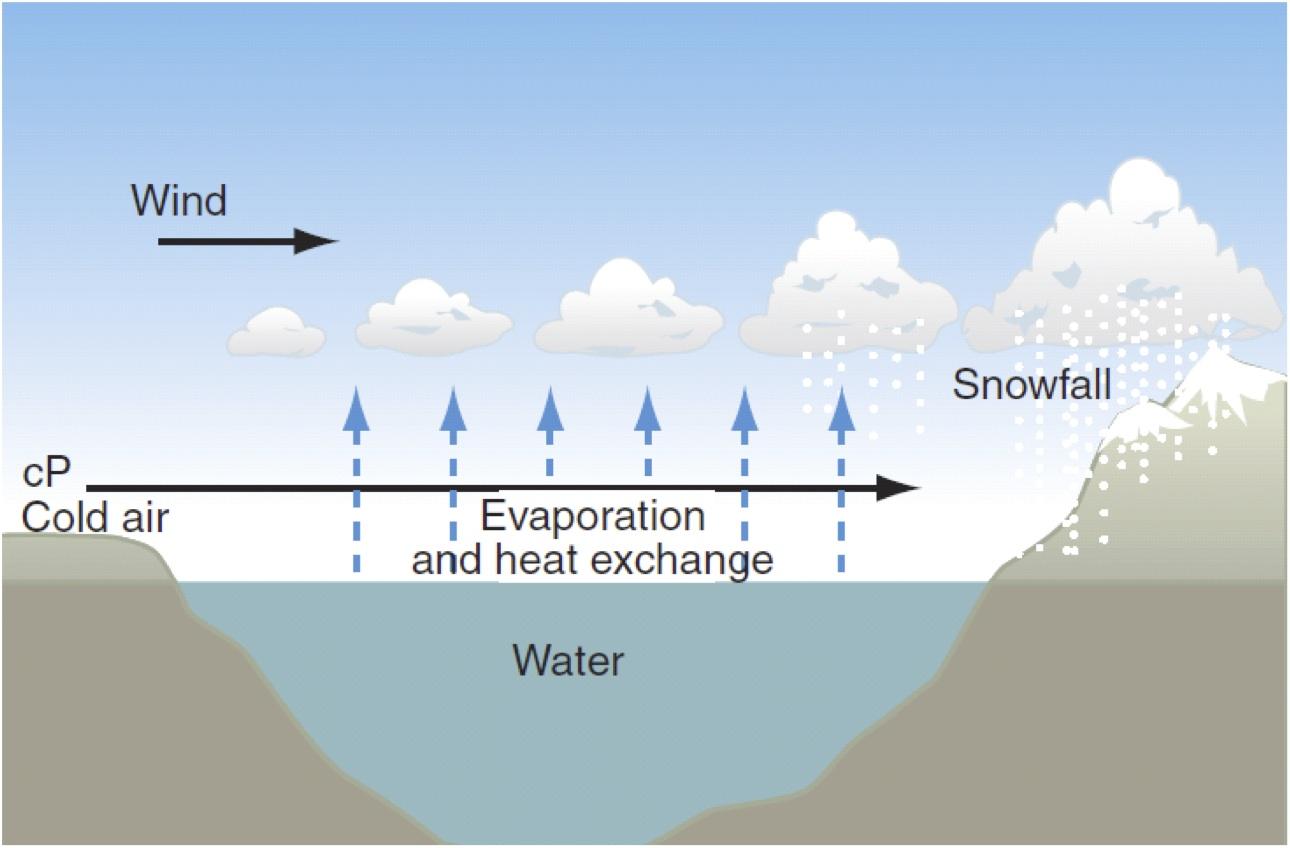 Amazing Snow Diagram Component - Electrical Diagram Ideas - itseo.info